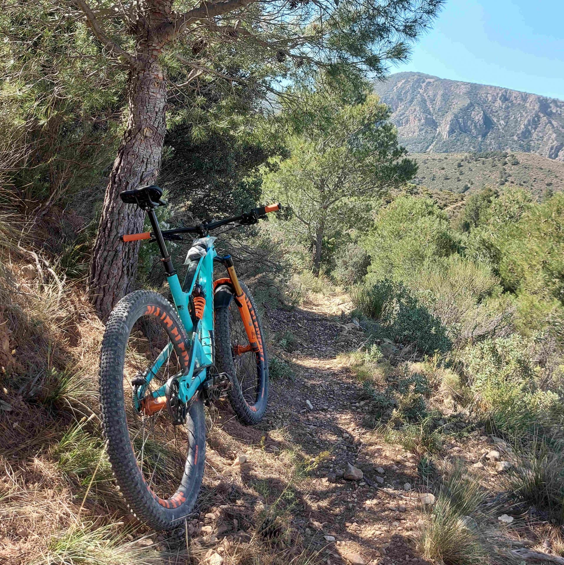 Scouting for mountain bike trails