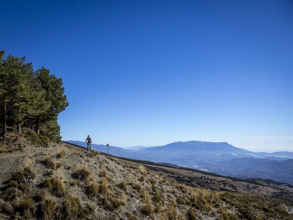 Lone mountain biker view to Sierra de Gádor