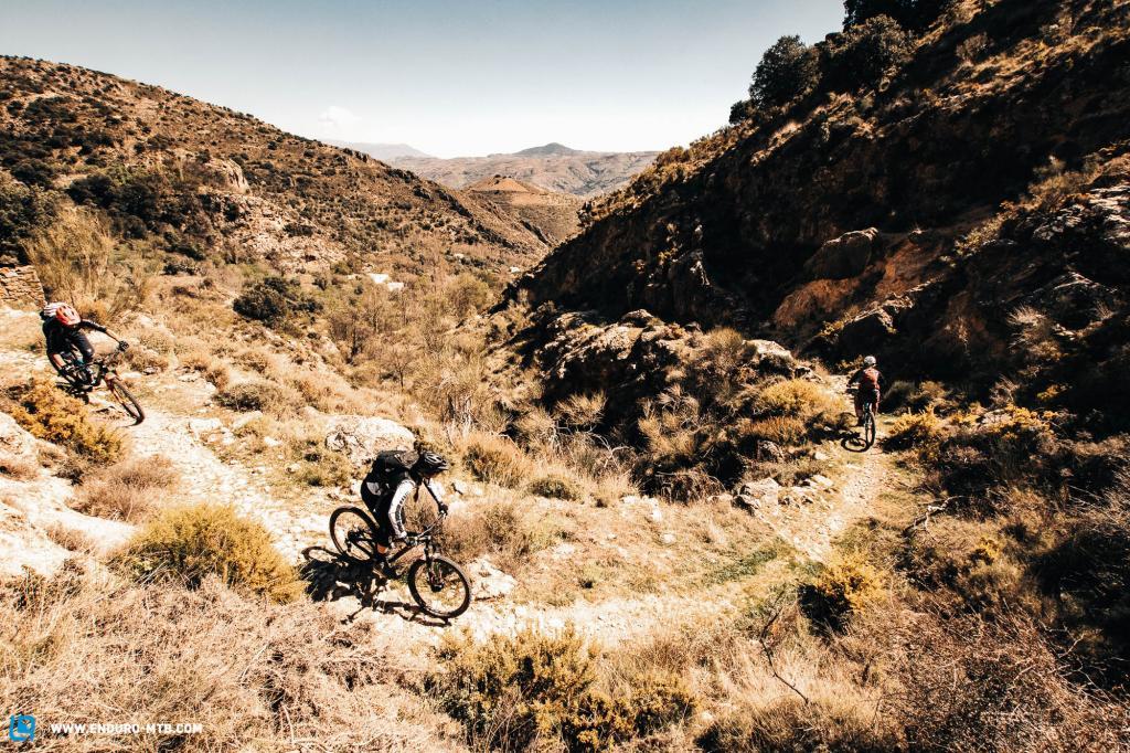 Riding sweet Sierra Nevada singletrack