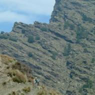 Big Rocky Outcrop
