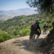 Sierra Nevada Trails