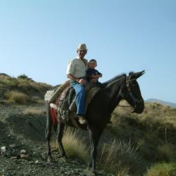 Juan on mule